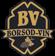 Borsodvin